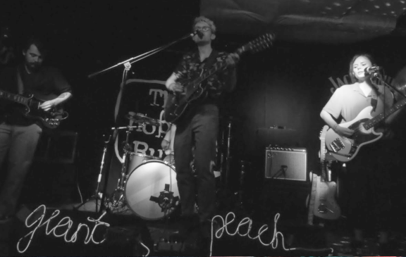 Giant Peach – The Hope & Ruin, Brighton – 20th June 2018